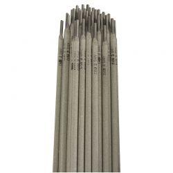bte-160-electrodes-3.2x350-sodise-05497